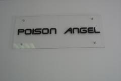 plaksnites ar logo